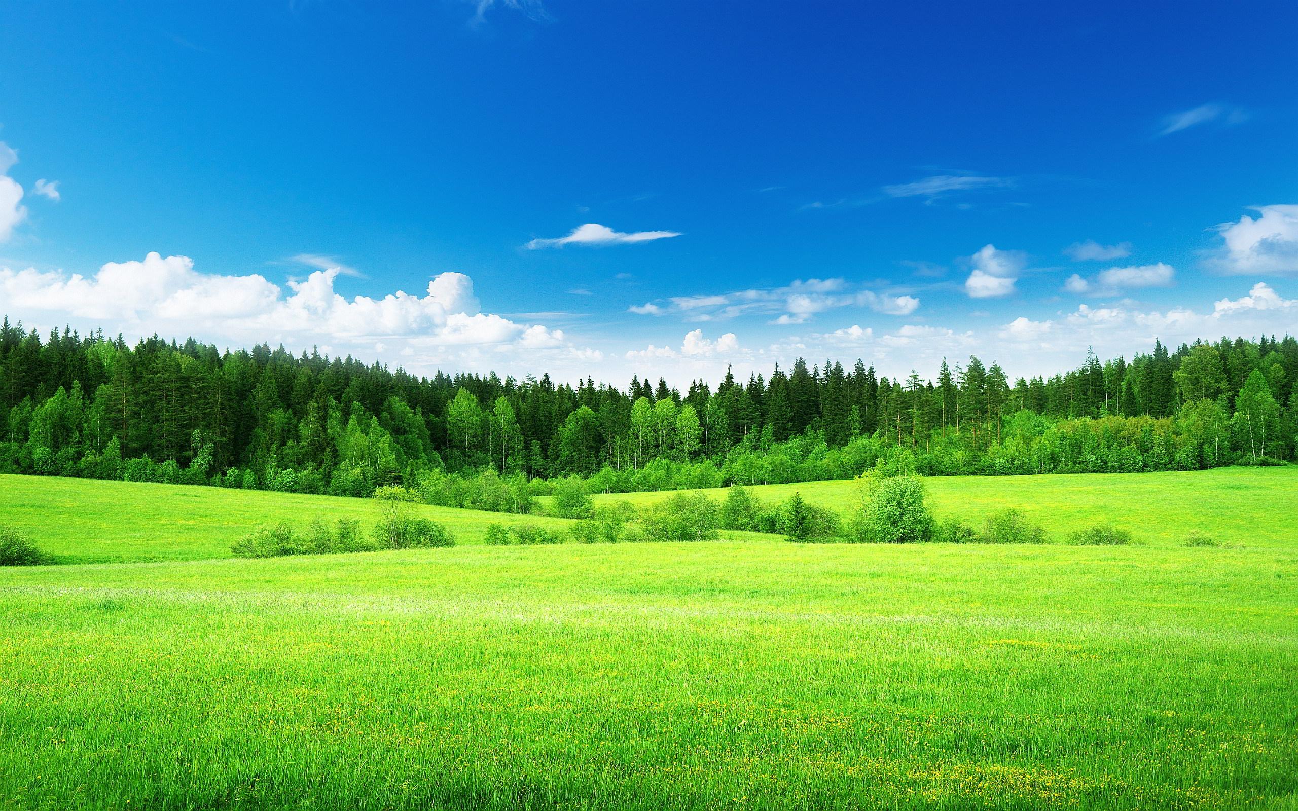 Green-Nature - Nomiko - Norsk Miljøkompetanse
